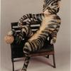 "Cat on Lounge Chair (#2099) 36""h x 30""w x 23""d ©1999 Kristen Muench photo by Debra Whalen"
