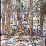 "Last of this Snowfall  October 2013, Pinery, CO watercolor by Kristen Muench 30"" x 22""   SOLD"
